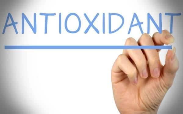Berfungsi Sebagai Antioksidan untuk Menangkal Radikal Bebas